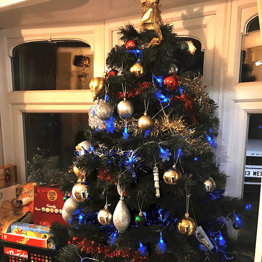 inLIFE Donates Christmas Tree to local Nursery